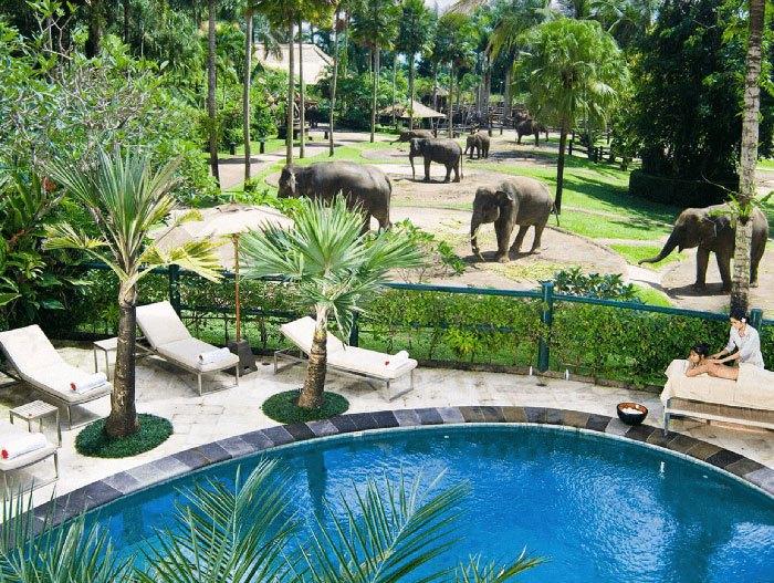 Family friendly hotels Bali